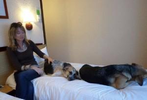 Amanda et les chiens à l'hôtel