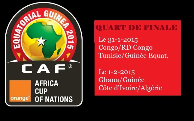 Can 2015 quart de finale - Quart de finale coupe du monde 2015 ...